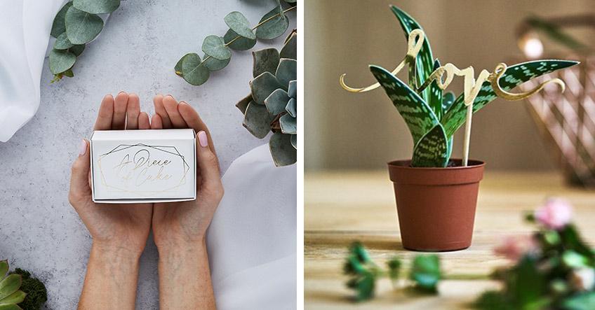 Verschenke Teile der Hochzeitstorte oder kleine eingetopfte Pflanzen