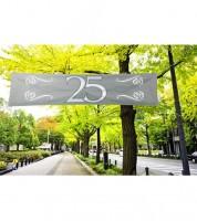 """Großer Banner aus Stoff """"25"""" - silber - 1,8 m"""